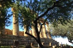 Tempio-di-Giunone-vista