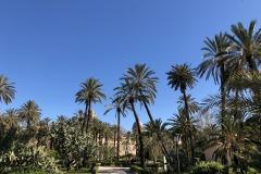 Cattedrale-vista-dal-Giardino-Bonanno