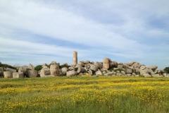 Selinunte-Fuso-della-Vecchia-Tempio-G